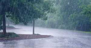 रिमझिम पाऊस
